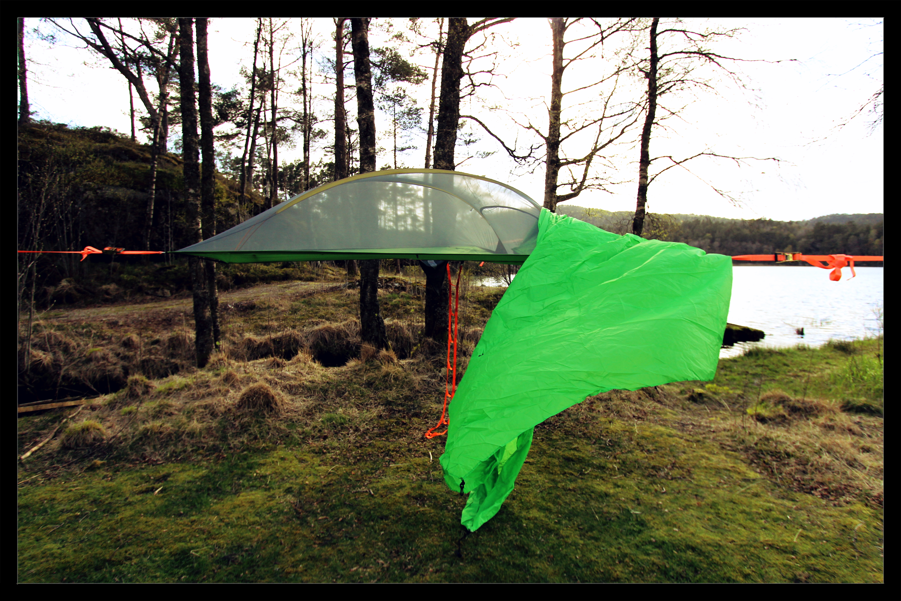 of photography d stingray copy by tentsile tent safari hammock s